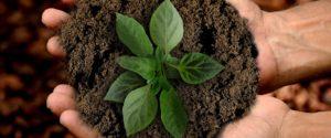 Hep Monatzeder Website Pressemitteilung Nachhaltigkeit2