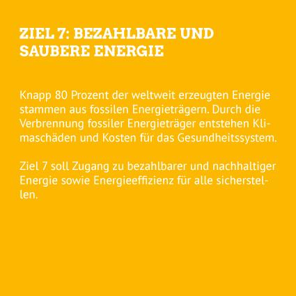 Hep Monatzeder Website SDGs Energie Rueckseite