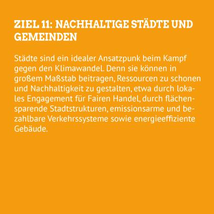 Hep Monatzeder Website SDGs StaedteGemeinden Rueckseite