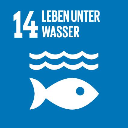 Hep Monatzeder Website SDGs Wasser Vorderseite