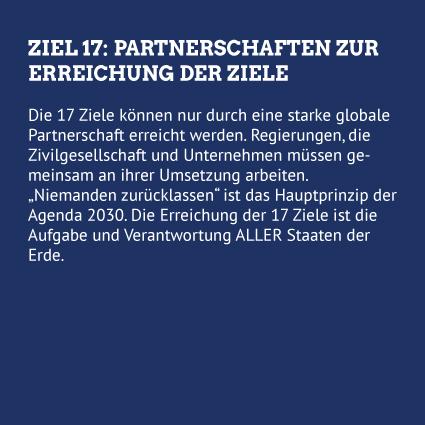 Hep Monatzeder Website SDGs Partnerschaften Rueckseite